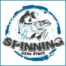 Spinning Case Study - Studiu de caz la spinning