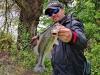 pescuit-bass-1